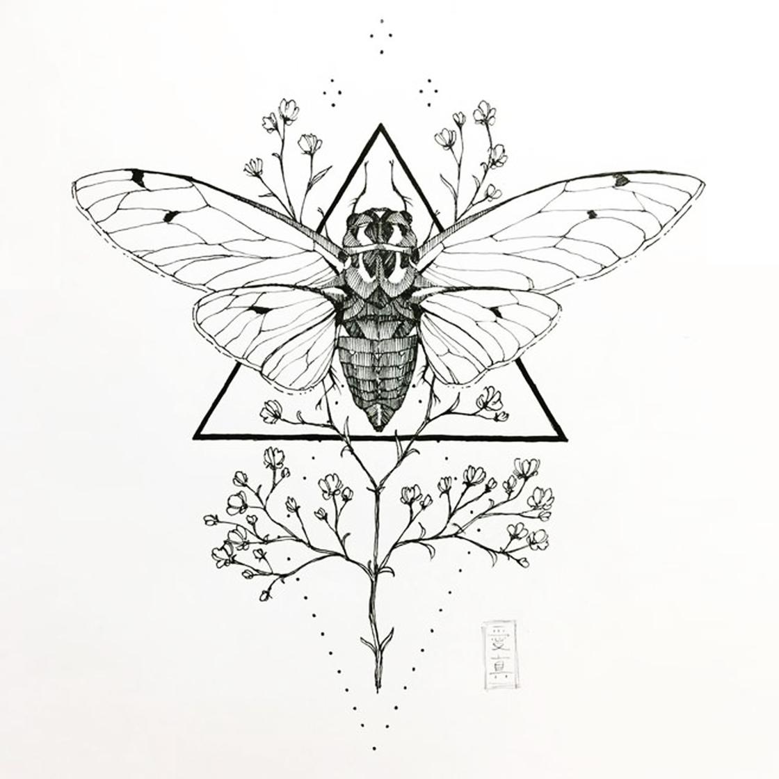 The Mysticism of Dan Schreiber and The New Sun Tribe – Cicadas – An